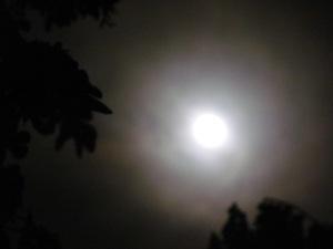 luna, carmen vàscones 23 de junio de 2013