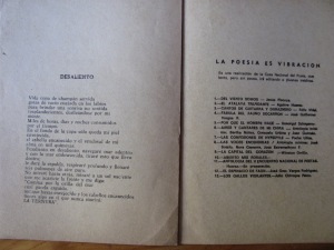 julia galvez poeta de perù