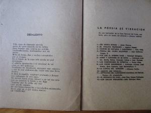 poeta julia gàlvez perù 029